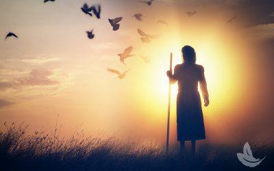 St. Rocco, Healer of Illness & Spiritual Protector