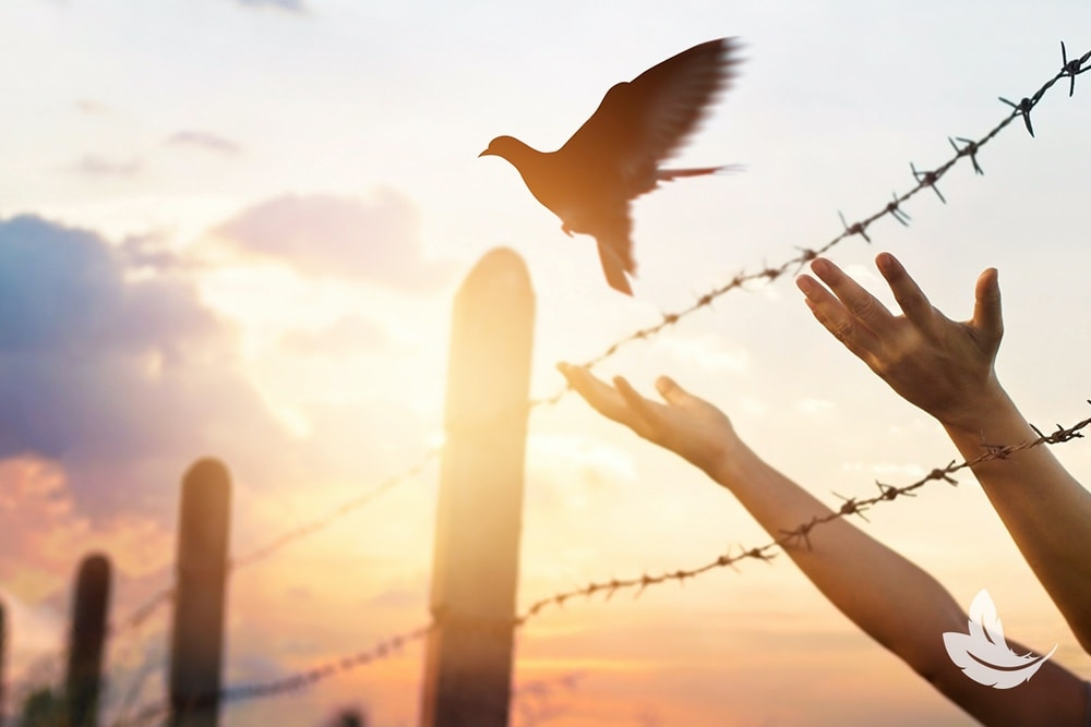 Letting Go of Fear and Anxiety